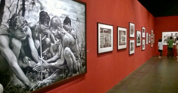 "At basement famous photographer Salgado's ""Genesis"" prints are on show"