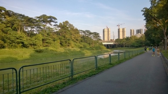 On the park connector beside Faber Gardens and facing Boon Lay Way and Clementi