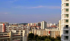 Public housing: view from my bedroom window