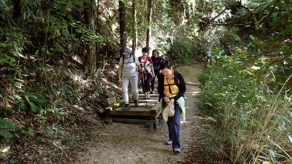 National Parks should take note. Perhaps a footbridge can be built for certain unstable paths in Bukit Timah Hill that had been closed.