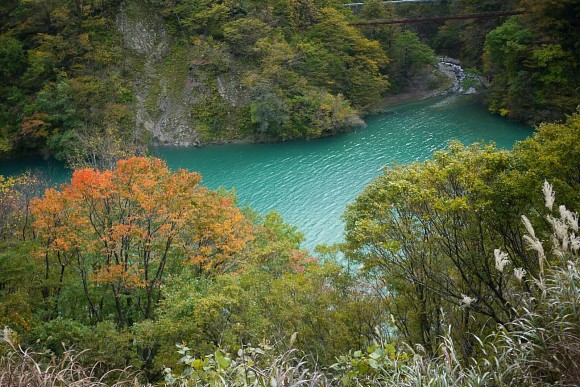 The turquoise waters of Kurobe river below the ravine. (Credits: Ruby)