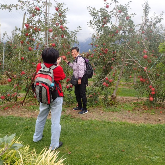 Maybe its more of photo taking than apple picking! Haha