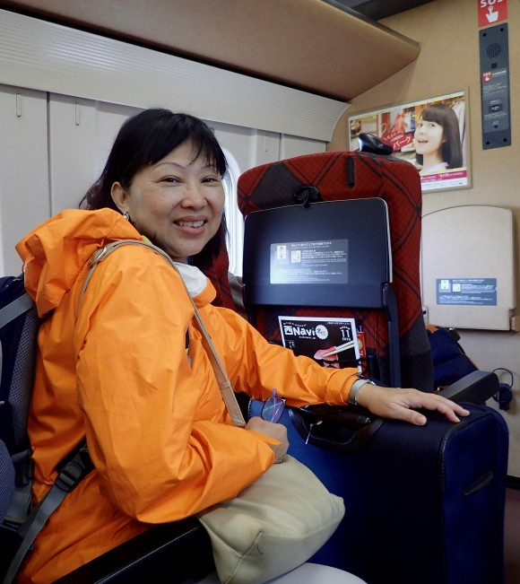 The joy and pain of taking the bullet train - fast and costly.